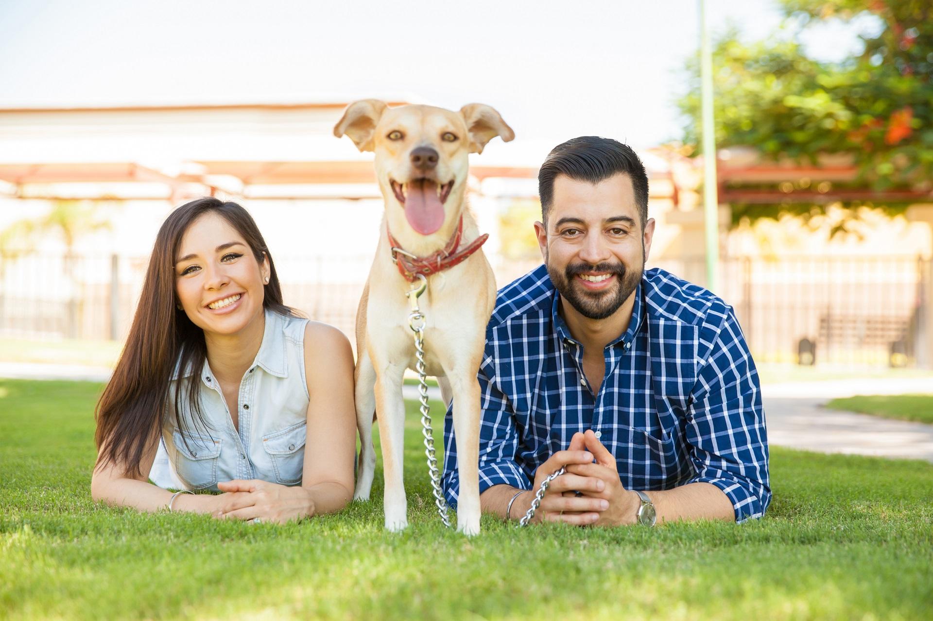 Hispanic-Fam-Dog-3